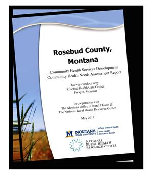 Community Health Needs Assessment Report Survey